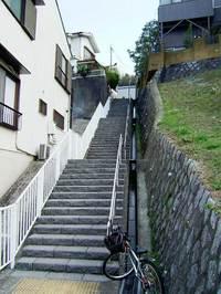 20060406-24.jpg