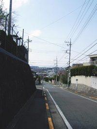 20060406-26.jpg
