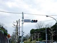 20060406-33.jpg